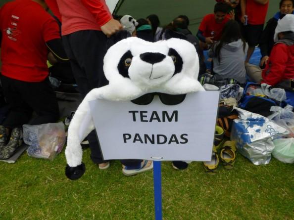 team Pandas